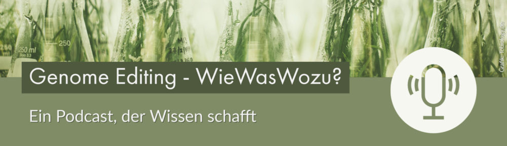 Genome Editing – WieWasWozu?